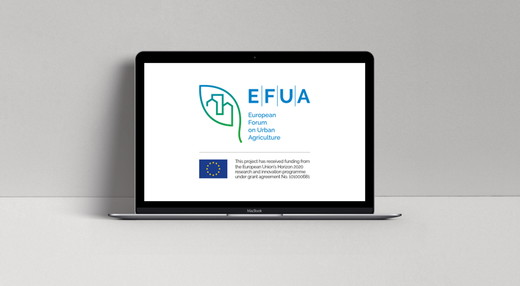 screen pc progetto efua